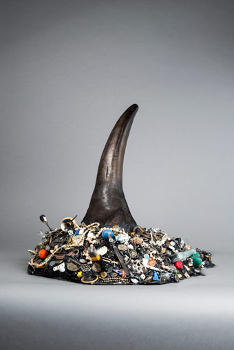 The Academy of Things. Anatomie. Rhinoceros Horn  (Repro Robert Vanis) Courtesy Galerie Nagel/ Draxler Berlin